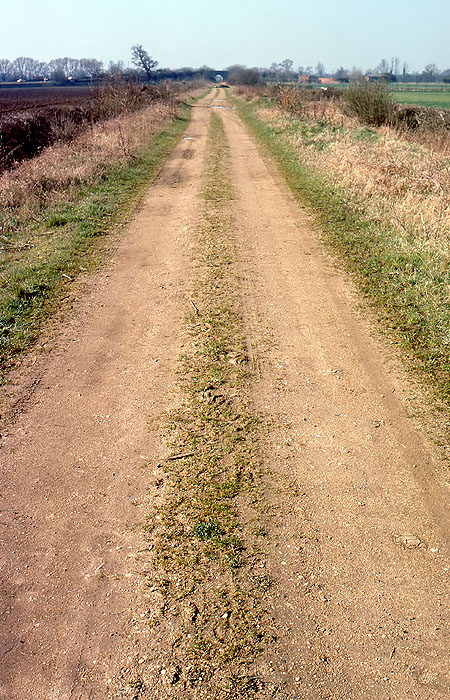 Trackbed between Yarnton and Cassington